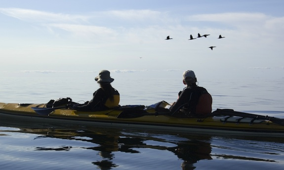 Carte Bleue Kayak.Faire Du Kayak De Mer Dans Lotbiniere Geo Plein Air