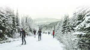 Premiere_neige_Monmorency