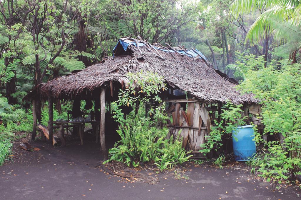 Vanatu logement